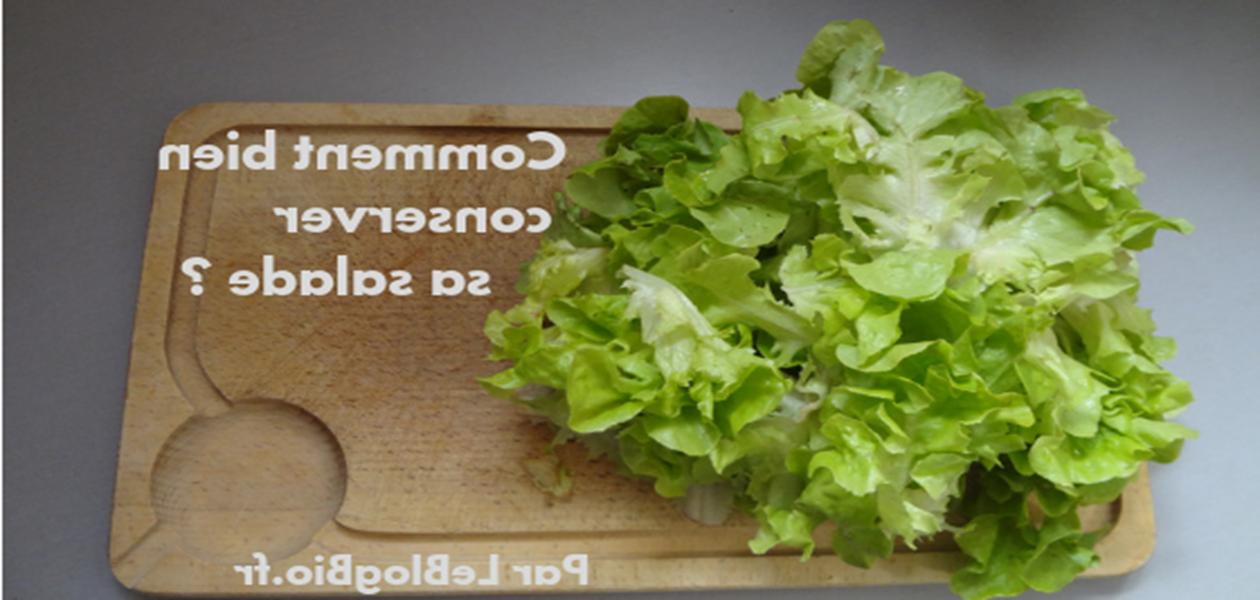 Comment conserver la salade en sachet au frigo ?
